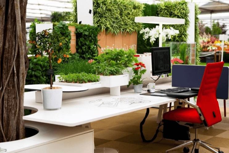 Văn phòng xanh là giải pháp thiết kế thân thiện với môi trường