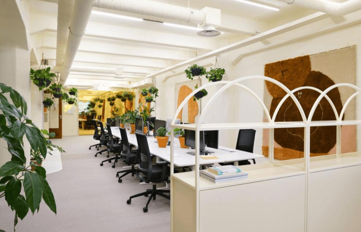 Mẫu văn phòng xanh hài hòa